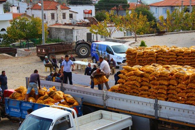 Muğla'da çiftçilere tohum desteği