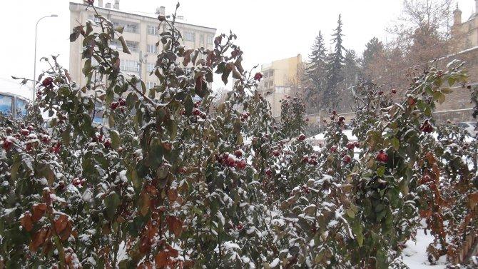 Nevşehir'de kar yeniden başladı