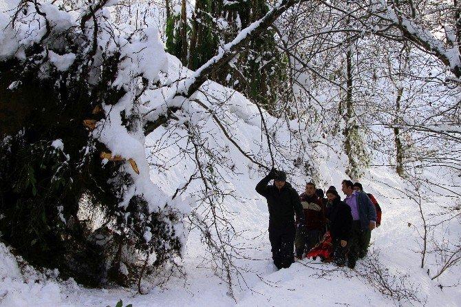 82 Yaşındaki Alzheimer Hastası, Kar Üzerinde Sedye İle Taşınarak Ambulansa Ulaştırıldı