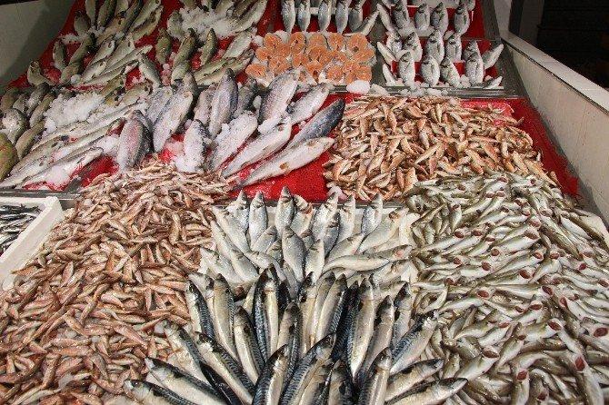 Soğuk Hava Balık Fiyatlarını İkiye Katladı