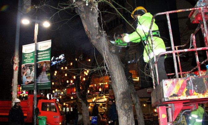 Budanan ağaç dalları, kışın ihtiyaç sahiplerini ısıtıyor
