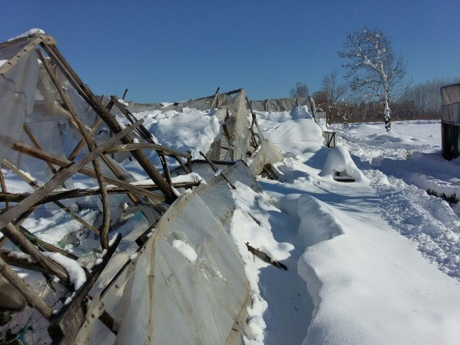 Tarımsal Üretimde Doğal Afet Zararı