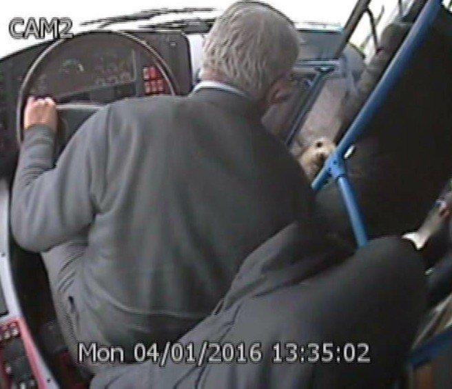 Soğukta Üşüyen Köpek, Halk Otobüsüne Binince İnmek İstemedi
