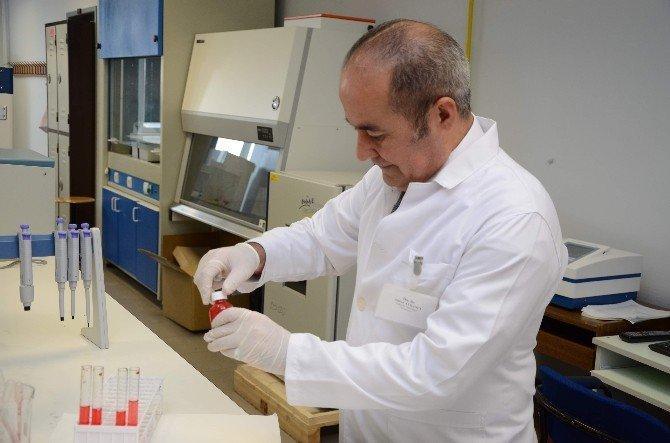 Türk Bilim İnsanları Yerli Malı Yapay Kan Üretti