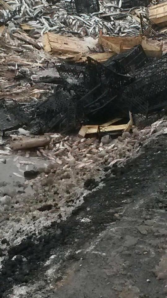 Batman'da balık yüklü kamyonet devrildi: 1 yaralı