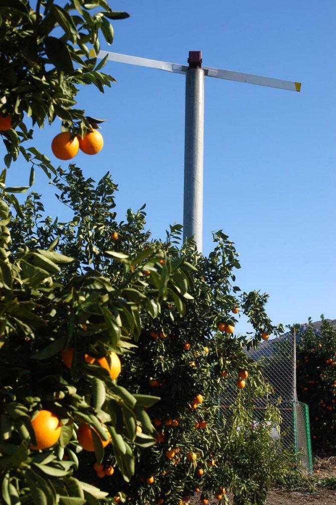 Narenciye bahçeleri don kırıcı rüzgar pervaneleriyle korunmalı