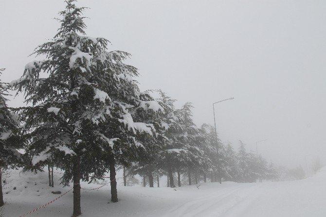 Kar Ve Sis Harput'ta Kartpostallık Görüntü Oluşturdu