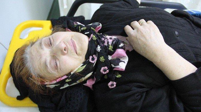 Samsun'da Köpeğin Çarptığı Yaşlı Kadın Hastanelik Oldu