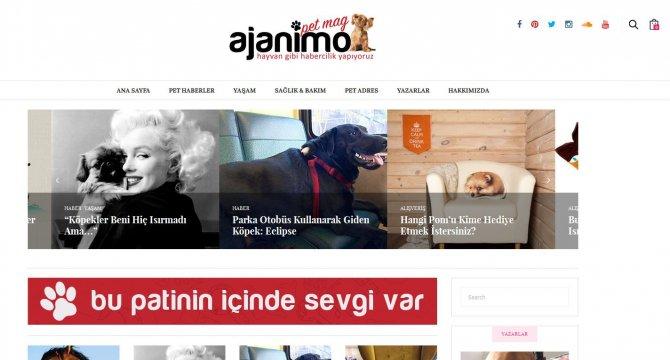 Bir köpeğin yönetmeni olduğu 'hayvan haber sitesi' yayında