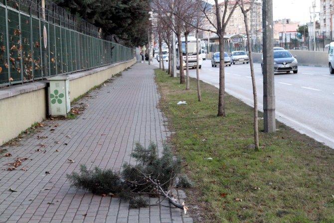 Bursa'da lodos; zehirlenen çok sayıda insan hastanelik oldu