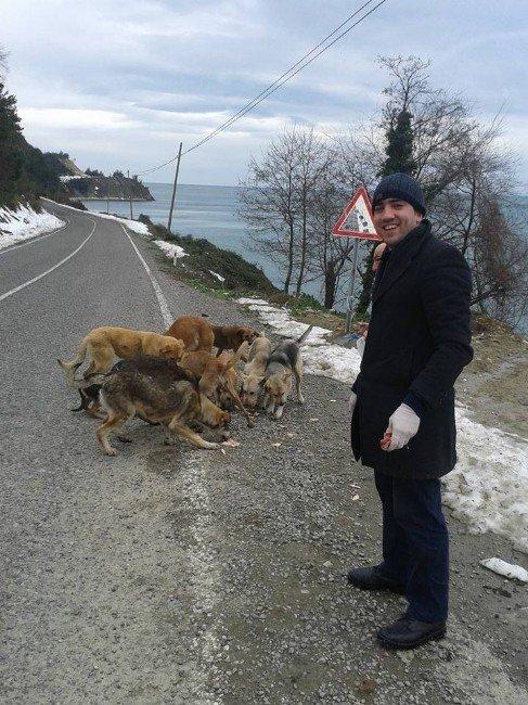 Esnaflar, Aç Kalan Sokak Köpeklerini Doyurdu