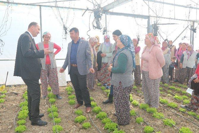 Demirci'de Seracılık Kursuna Bayanlardan Yoğun İlgi