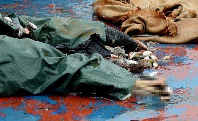 Kayıp Balıkçının Cesedi, 2 Sene Sonra Ağa Takıldı