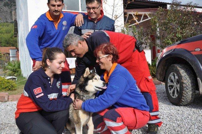 Fethiye UMKE'den Köpek Kurtarma Operasyonu
