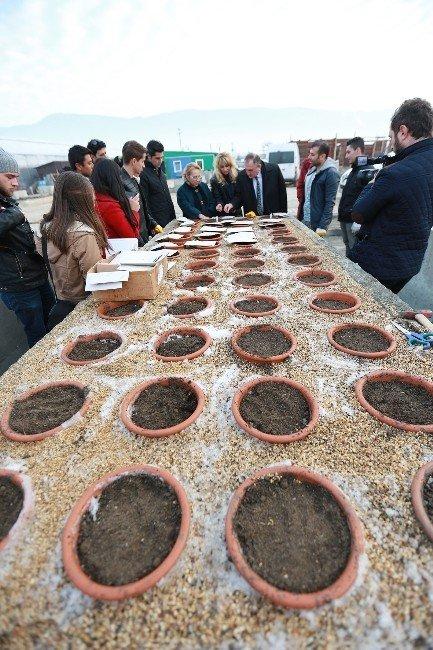 Bolu'da Endemik Bitkileri Koruma Altına Alınıyor