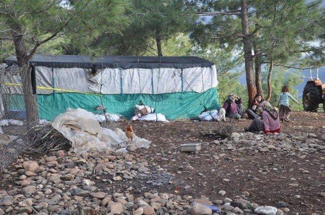 Osmaniye'de Silahlı Kavga: 1 Ölü, 1 Yaralı