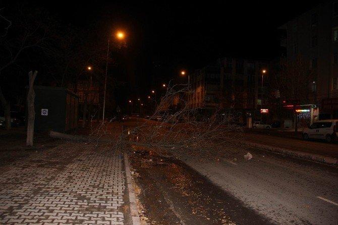 Kayseri'de Şiddetli Rüzgar Ağaç Devirdi, Çatı Uçurdu