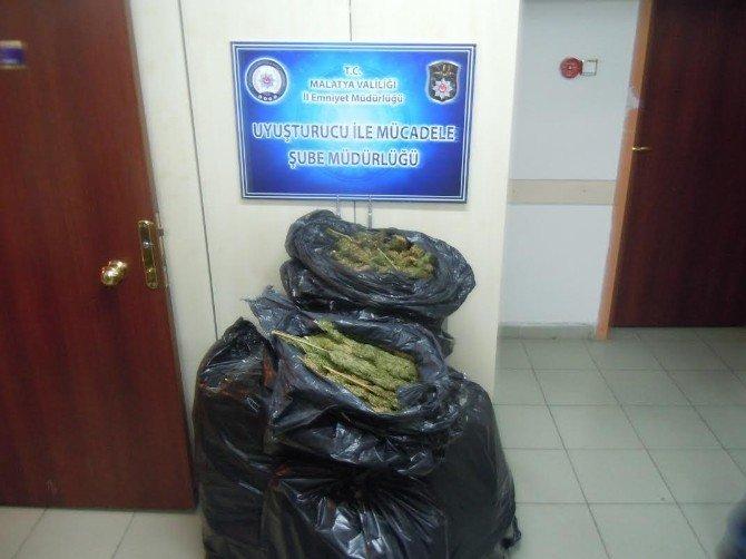 Malatya'da 50 Kilo Esrar Ele Geçirildi: 2 Tutuklama