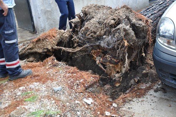 Şiddetli Yağış Ve Fırtına Milas'ı Vurdu