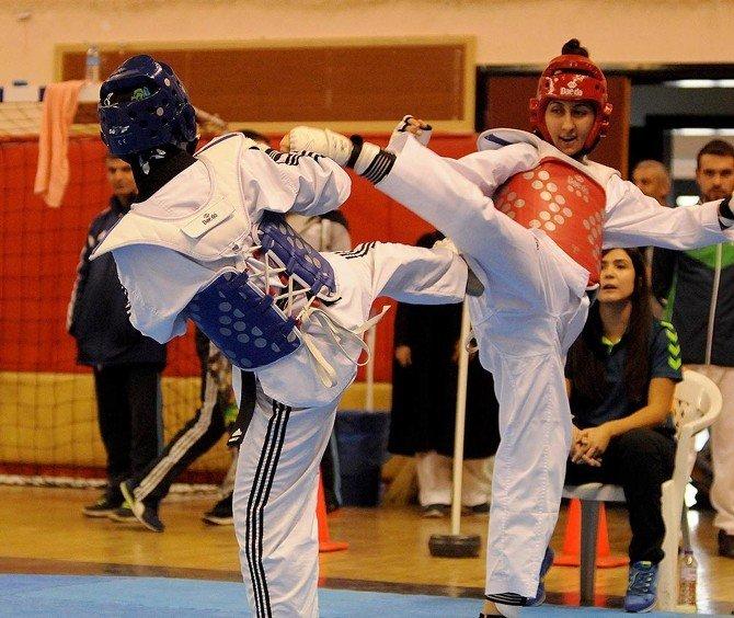 Büyükşehir'in Taekwondo Takımları Başarıya Doymuyor