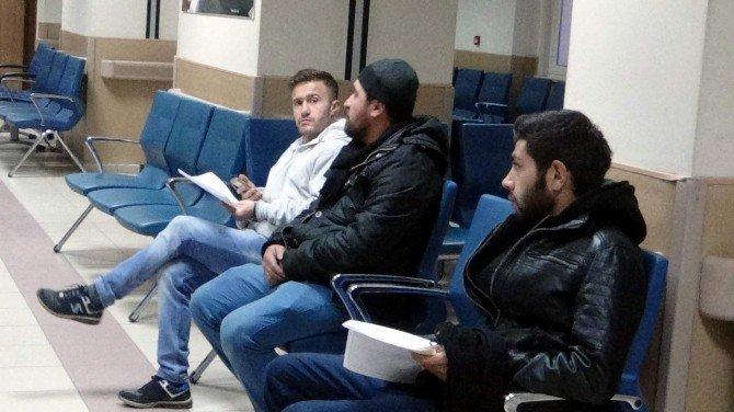 Nevşehir'de Domuz Gribine Rastlanmadı