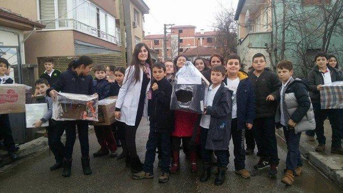 Öğrenciler Sokak Hayvanlarına Sahip Çıktı