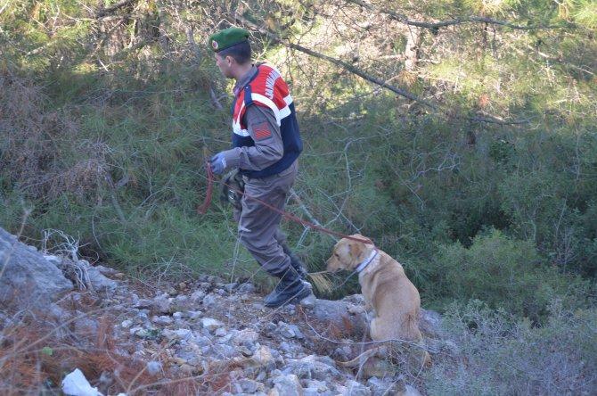 3 gündür kayıp zihinsel engelli eğitimli köpeklerle aranıyor