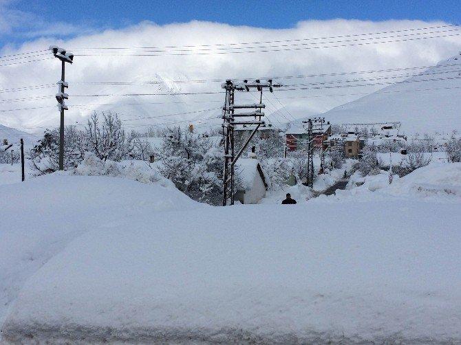 Bitlis'te Beyaz Esaret Devam Ediyor