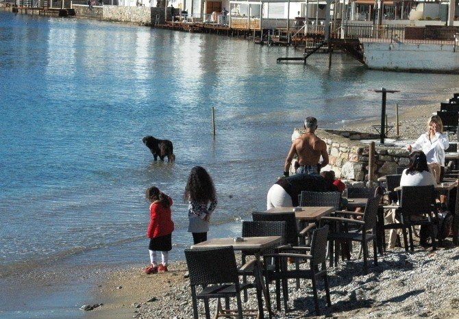 Türkiye Kışı, Bodrum Yazı Yaşıyor