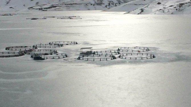 Zernek Barajı Dondu