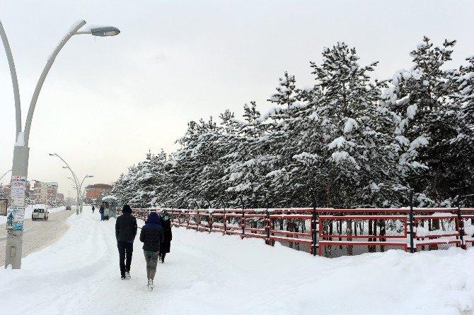 Ağrı'da Kış Manzaraları