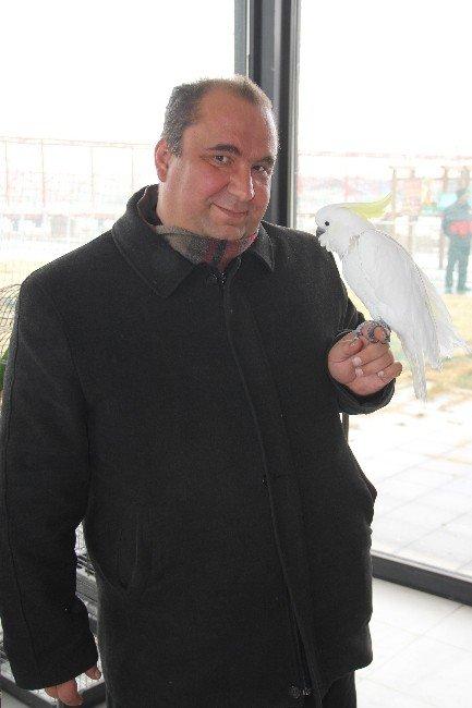 Anadolu Harikalar Diyarı Hayvanat Bahçesini 2015 Yılında 500 Bin Kişi Ziyaret Etti