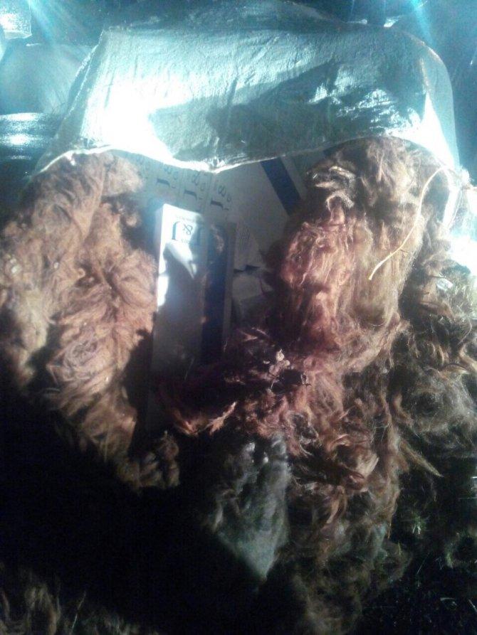 Saman çuvalları arasında kaçak sigara ele geçirildi