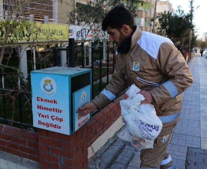 Haliliye'de Günlük 1 Ton Ekmek İsrafının Önüne Geçiliyor