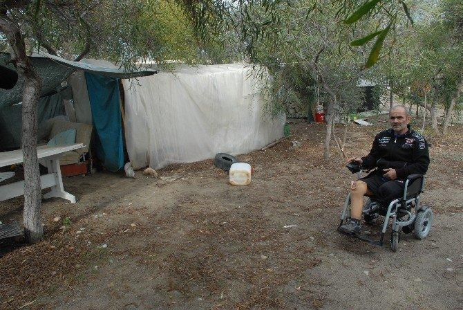 Kesik İki Ayakla Çadırda Yaşam Mücadelesi
