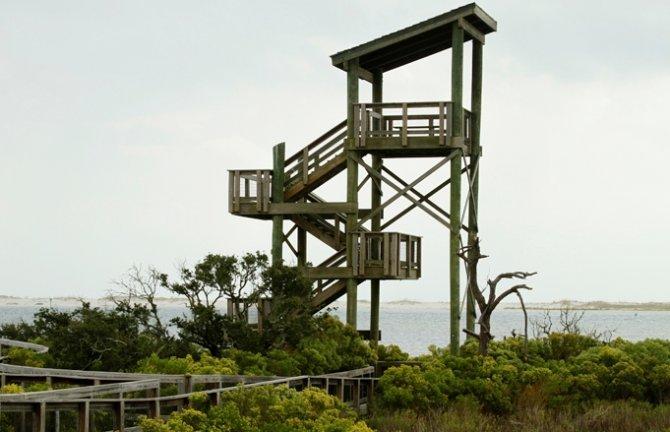 Kızılırmak Deltası'nda 'Doğa Eğitim Merkezi' kurulacak