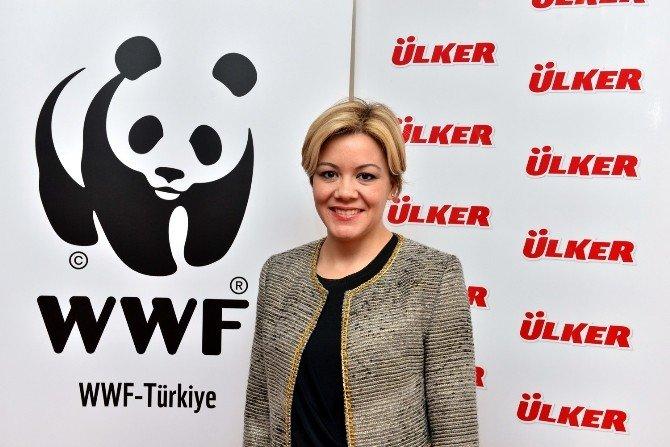 Wwf-türkiye Ve Ülker Fındığın Geleceği İçin Çalıştay Yaptı