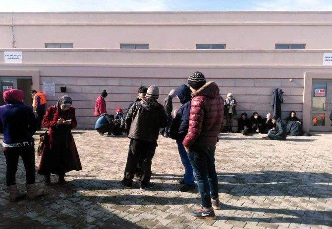 Aydın'da 77 Göçmen Yakalandı