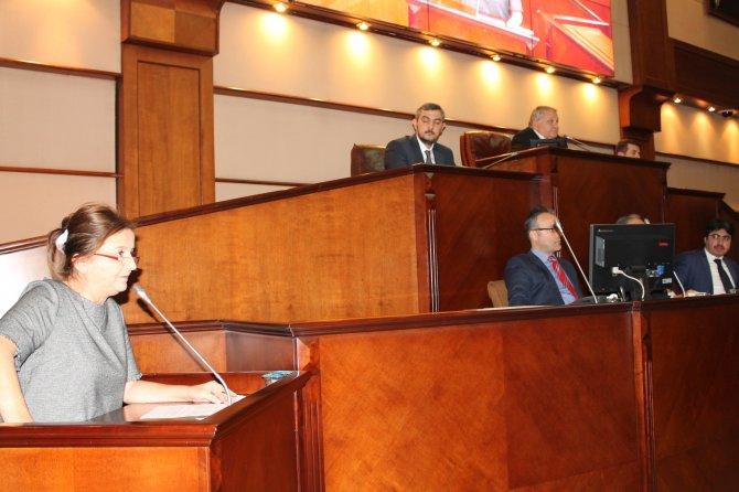 CHP'li meclis üyesi: Fatih ormanlarının yüzde 57'si imara açılıyor!