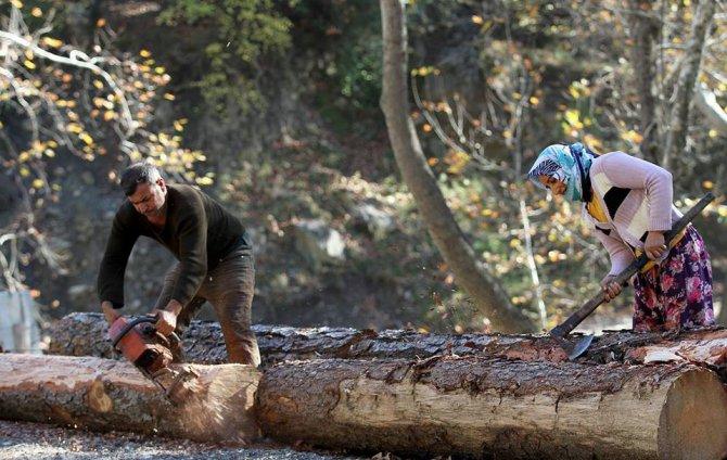 Orman köylüsüne 62 milyon liralık destek sağlandı