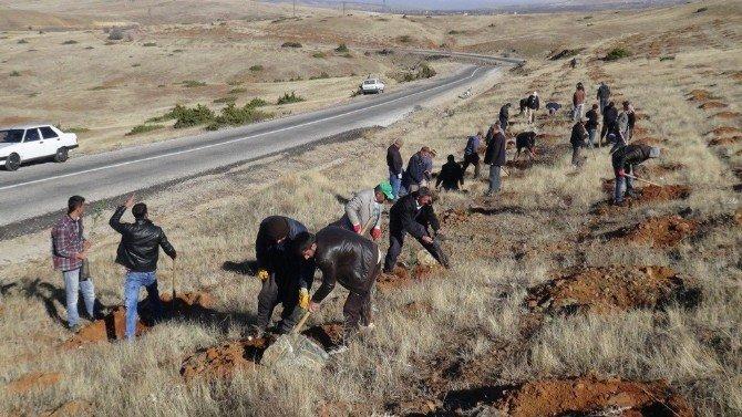 Doğanşehir'de 200 Orman İşçisi Kazma Bıraktı