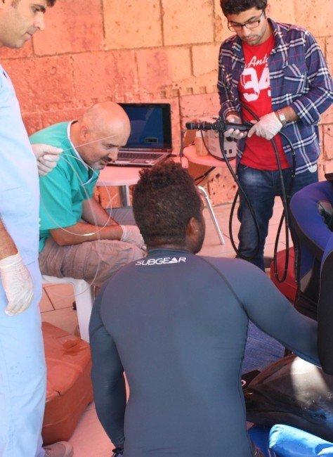 Dalgıç Maskesi Yutan Bir Yunusa Türkiye'de İlk Defa Endoskopi Uygulandı