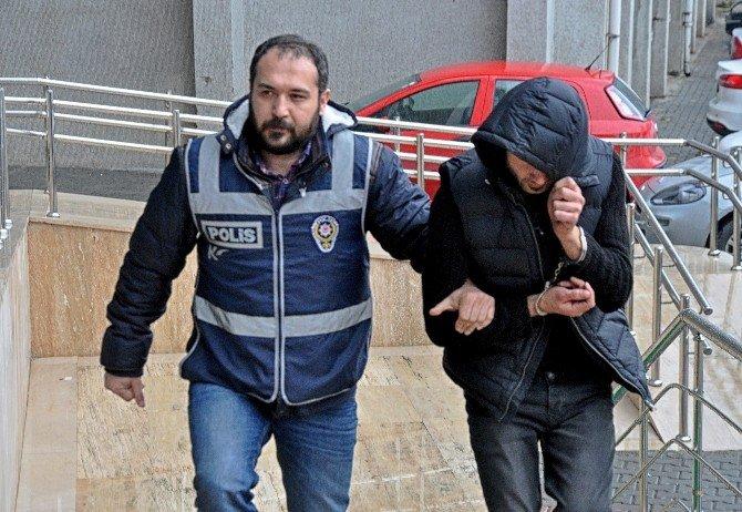Zonguldak'ta Bonzai Ve Ecstasy Operasyonu