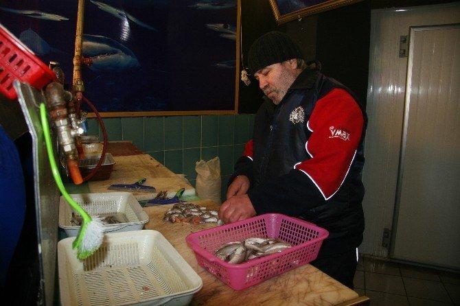 Afyonkarahisar'da Balık Fiyatları