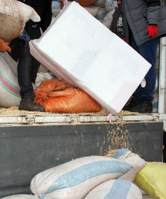 Fıstık Kabuğu Arasından 50 Bin Paket Kaçak Sigara Çıktı