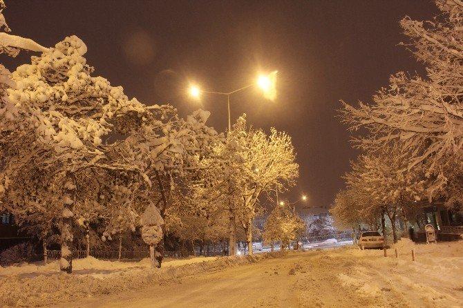 Doğu Anadolu'da Kar Esareti