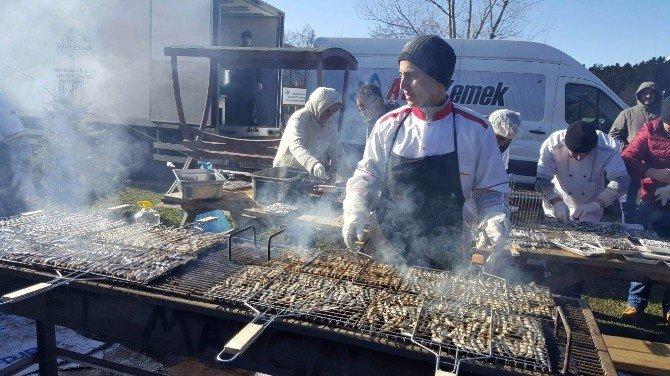 Bolu Ordulular Derneği'nden Hamsi Balık Festivali