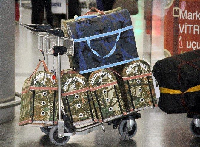 Türkmenistanlı 2 Yolcu, 6 Horozla Havalimanında Mahsur Kaldı