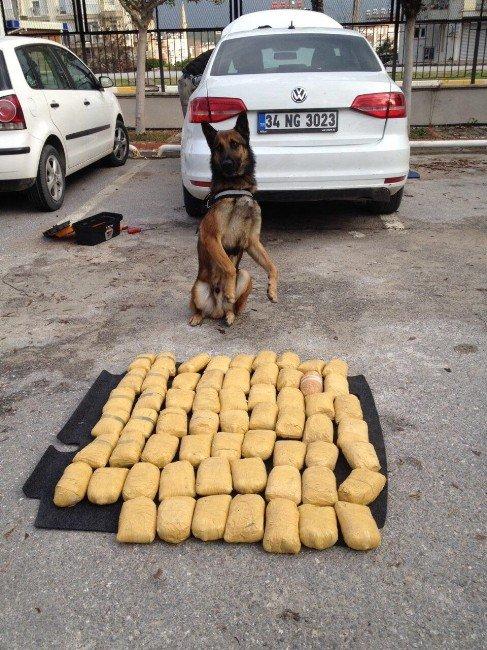 Uyuşturucu Tacirinin Foyasını Narkotik Köpeği Ortaya Çıkardı