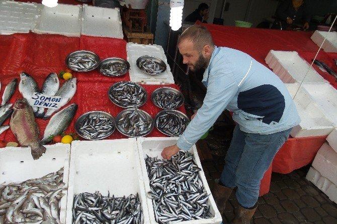 Balık Satıcıları Sezondan Memnun Değil